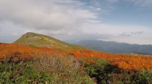 月山(山形)の紅葉写真