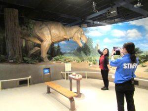 ティラノサウルスとの撮影風景