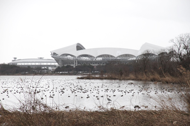 鳥屋野潟の写真